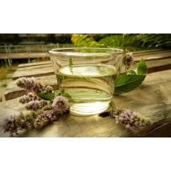 Peprnomátová silice, 10 ml