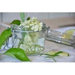 Bezový květ extrakt 30 ml