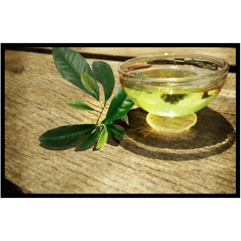 Tea Tree oil 100% čistý olej 1000ml - čajovníkový olej